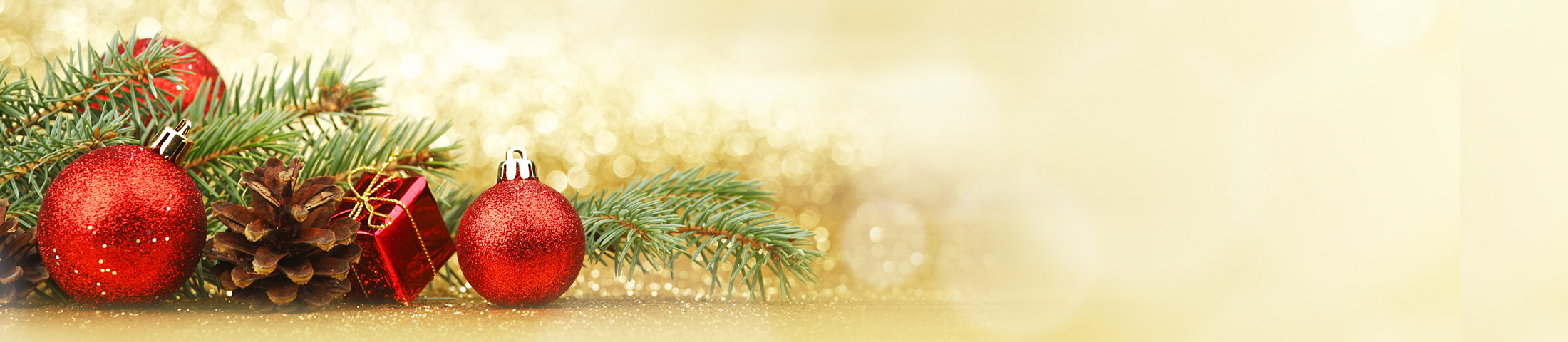 holiday-specials-2016